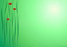 Grön bakgrund med blommor Royaltyfria Bilder