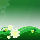 Grön bakgrund med härliga blommor Royaltyfria Foton