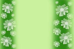 Grön bakgrund med tusenskönor royaltyfri bild