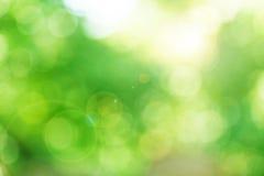 Grön bakgrundsbokeh Arkivfoto