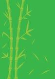 Grön bambuvektorbakgrund Arkivfoton