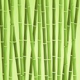 Grön bambuvektorillustration Vektor Illustrationer