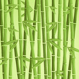 Grön bambuvektorillustration Stock Illustrationer