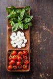 Grön basilika, vit mozzarella, röda tomater Arkivfoto