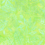 Grön Batikmodell Arkivbilder
