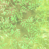 Grön Batikmodell Royaltyfri Bild