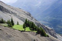 Grön bergäng med träd Royaltyfria Bilder