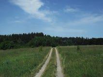 Grön bergig glänta för sommar royaltyfria bilder