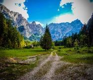 Grön berglandschape med den sandiga vägen Arkivfoton