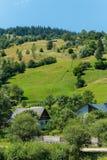 Grön berglutning med träd som leder till små hemtrevliga lantliga hus Royaltyfri Foto