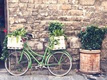 Grön biclycle för tappning med korgen som är full av växter Arkivbild