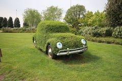 Grön bil Arkivfoton