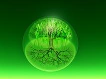 Grön bio sfär Arkivfoton