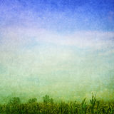Grön blåttbakgrund Fotografering för Bildbyråer