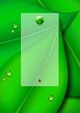 Grön bladbakgrund med textpanel- och gräsplanvärlden Arkivfoton
