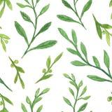 grön bladillustration för vattenfärg, sömlös modell Arkivfoton