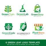 Grön bladnatur Logo Template Design Vector Vektor Illustrationer