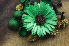 Grön blomma Royaltyfri Foto