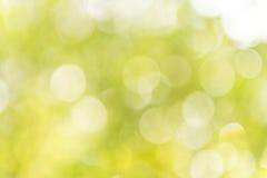 Grön bokehbakgrund Arkivfoton