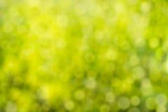 Grön bokehbakgrund element för klockajuldesign Abstrakt ecogräsplan bl Royaltyfri Bild