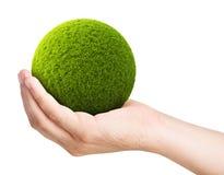 Grön boll från gräs på en gömma i handflatan Arkivfoton