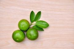 grön citron royaltyfri fotografi