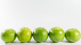 grön citron royaltyfria foton