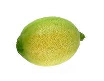 grön citron Arkivfoto