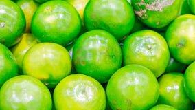 Grön citrus tangerina Royaltyfria Foton