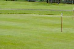 Grön closeup för golf royaltyfri bild