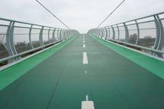 Grön cykelbro till himmelingenstans Royaltyfri Bild