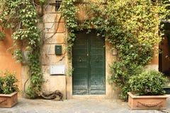 Grön dörr på en grön gata Arkivfoto