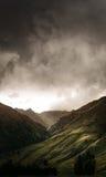 grön dal Royaltyfri Foto