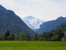Grön dal i de schweiziska fjällängarna Royaltyfri Fotografi