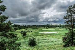 Grön dal med ett naturligt damm, buskar och träd, regnhimmel, tråkig blåsig dag för sommar royaltyfri bild