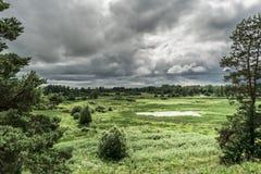 Grön dal med ett naturligt damm, buskar och träd, regnhimmel, tråkig blåsig dag för sommar fotografering för bildbyråer