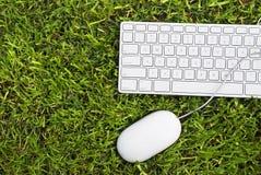Grön dator Fotografering för Bildbyråer