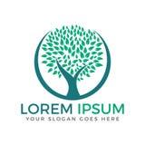 Grön design för logo för cirkelträdvektor Arkivfoto