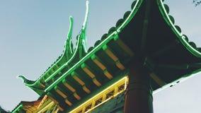 Grön drake Royaltyfri Bild