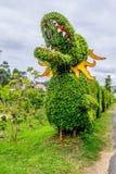 Grön drake från en klippt buske Arkivbild