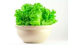 Grön ek för din hälsa. Royaltyfri Foto