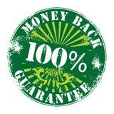 grön etikettvektor Royaltyfri Bild