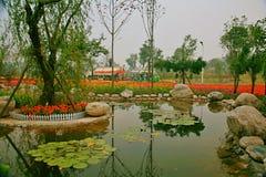 Grön expoträdgård i Zhengzhou Arkivbild