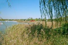 Grön expoträdgård i Zhengzhou Royaltyfri Bild