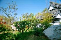 Grön expoträdgård i Zhengzhou Royaltyfria Foton