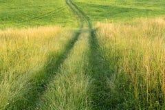Grön fält och bana Arkivbilder