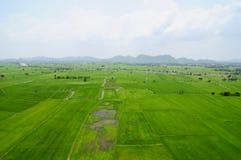 Grön fält och sky Royaltyfri Fotografi