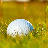 Grön fält- och vitgolfbollsanset Royaltyfri Fotografi