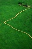 Grön fältbana som går vägen royaltyfria foton