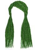 Grön färg för moderiktiga långa hårcornrows Realistiska diagram Fas Arkivbilder